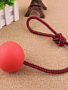Игрушка для котов Игрушка для собак Игрушки для животных Шарообразные Милый стиль Веревка Эластичный Для домашних животных
