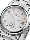 Муж. Механические часы С автоподзаводом Календарь Защита от влаги Фосфоресцирующий сплав Группа Серебристый металл