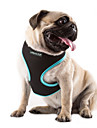 Cat Dog Harness Adjustable / Retractable Breathable Solid Nylon Mesh Orange Rose Green Blue